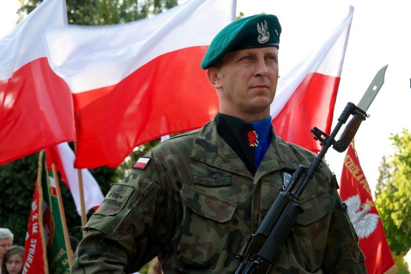 Siła polskiej armii